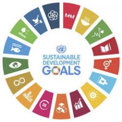 The UN Sustainable Development Goals