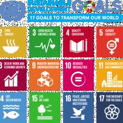 Volunteering Waikato's role in the UN Sustainable Development Goals