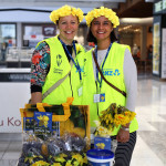 image for Daffodil Day Appeal - Street Collectors